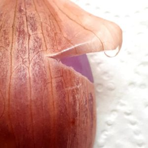 Layers-of-an-onion-mindfully-unfolding-una-keeley-mbsr-ireland