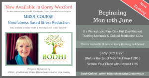 MBSR-Mindfulness-Course-Gorey-Wexford-Bodhi-Clinic-Una-Keeley-June-2019