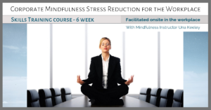 Corporate-Mindfulness-Training-Course-with-Una-Keeley-FB