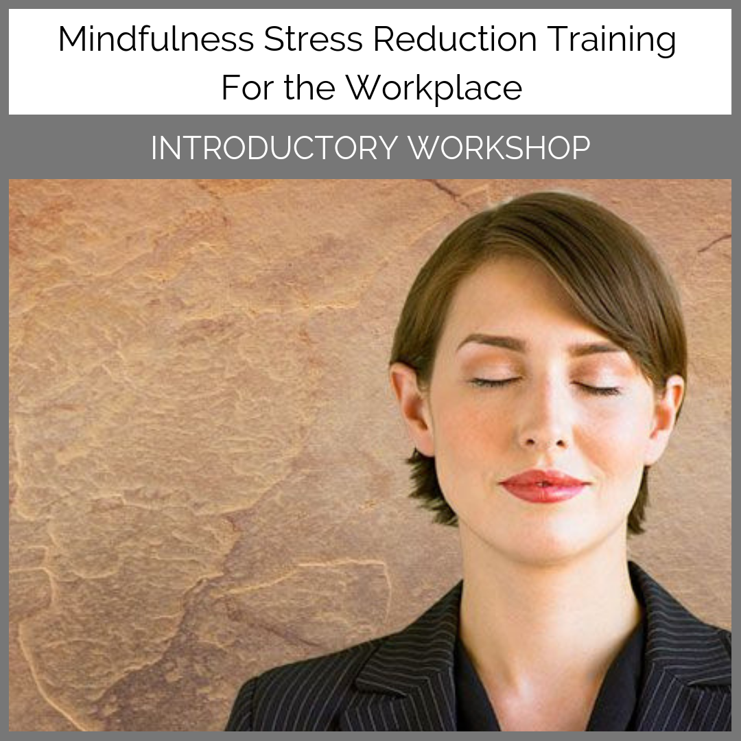 Introductory-Workshop-Corporate-Mindfulness-Training-Course-with-Una-Keeley
