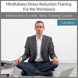 Level-1-Corporate-Mindfulness-Training-Course-with-Una-Keeley-270x270-Featured