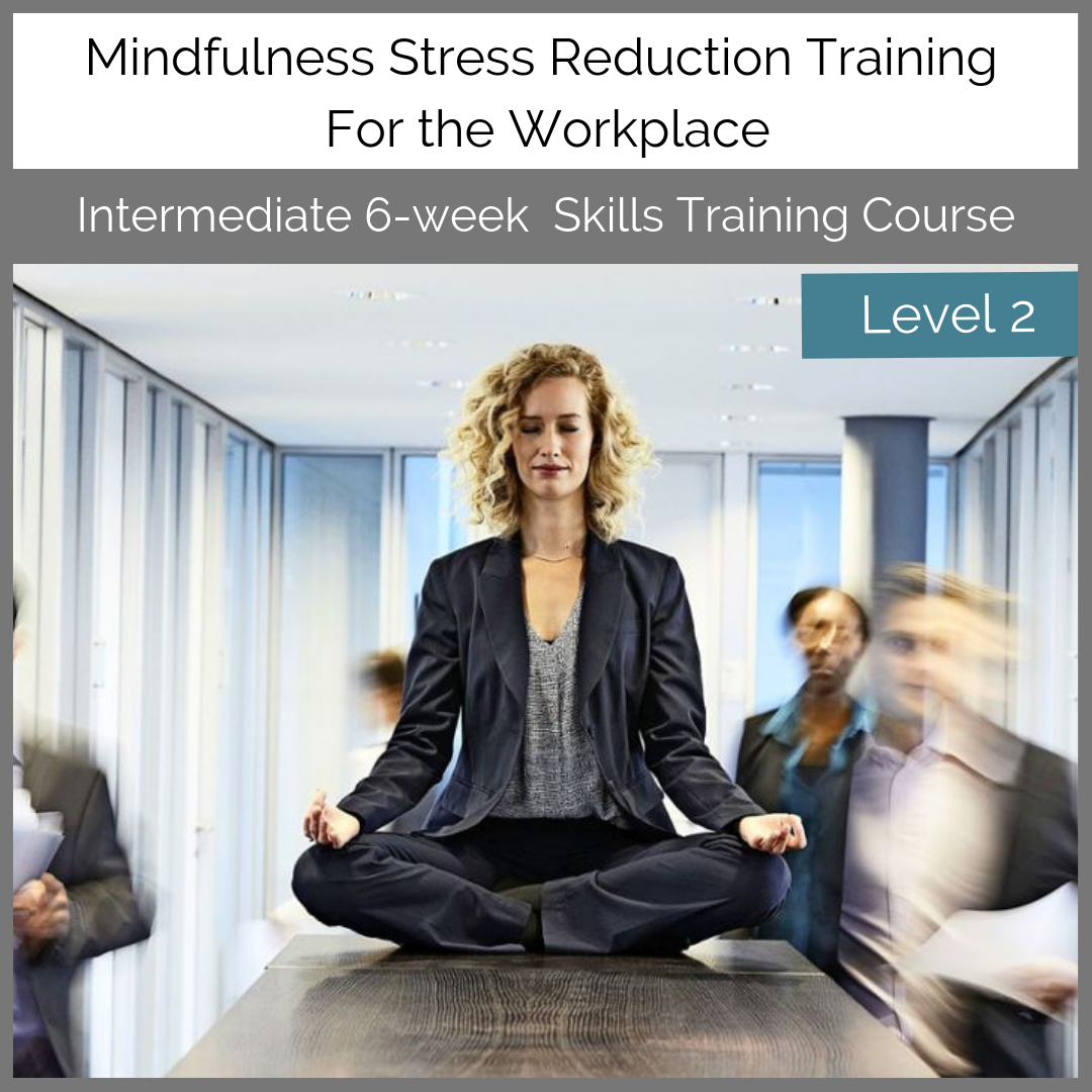 Level-2-Corporate-Mindfulness-Training-Course-with-Una-Keeley