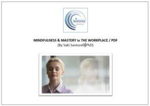 Mastery-in-the-Workplace-Saki-Santorelli